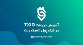نحوه دریافت TXID در اتمیک
