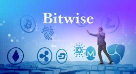 بیت وایز (Bitwise) به سرمایه گذاری خود در ریپل پایان داد