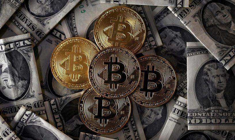 هودلرهای ثروتمند بیت کوین واکنشی به سقوط بیت کوین (BTC) نشان نداده اند!