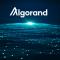 چرا آلگوراند علیرغم اصلاح اخیر بازار، رکورد قیمتی جدیدی ثبت کرد؟